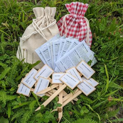 Darčekový balíček semien šalátov - darčekové balenie zadarmo