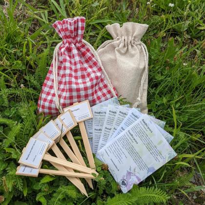 Darčekový balíček semien bazaliek - darčekové balenie zadarmo