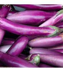Baklažán - Pingtung - semená baklažánu - semiačka - 6 ks