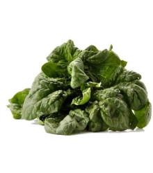 BIO Špenát siaty - Spinacia oleracen L. - semená špenátu - semiačka - 12 gr