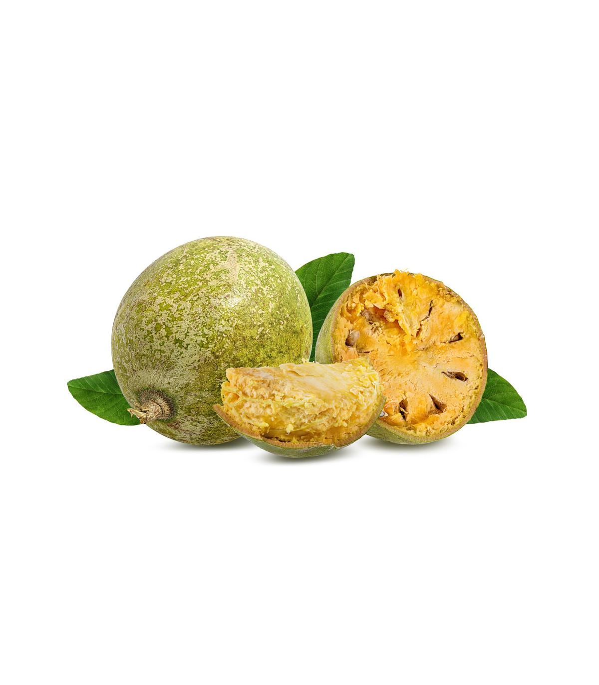 Bengálska dula - Aegle marmelos - bonsaj - semená duly - 3 ks