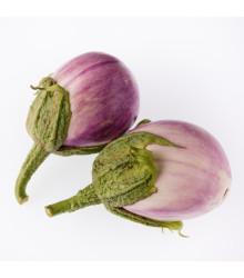 Baklažán - Rosa Bianca - semená baklažánu - semiačka - 6 ks