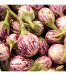 Baklažán Listada - semená baklažánu - semiačka - 7 ks
