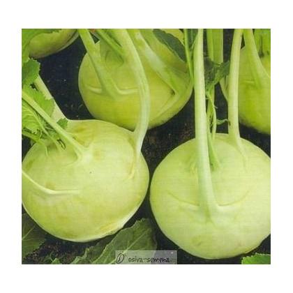 Kaleráb extra jemný - rastlina Brassica oleracea - predaj semien kalerábov - 50 ks