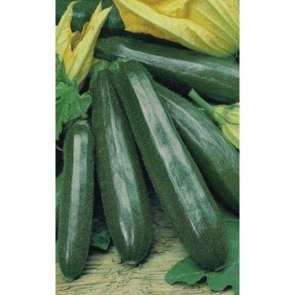 BIO Cuketa F1 Partenón - predaj bio semien cukety - 5 ks