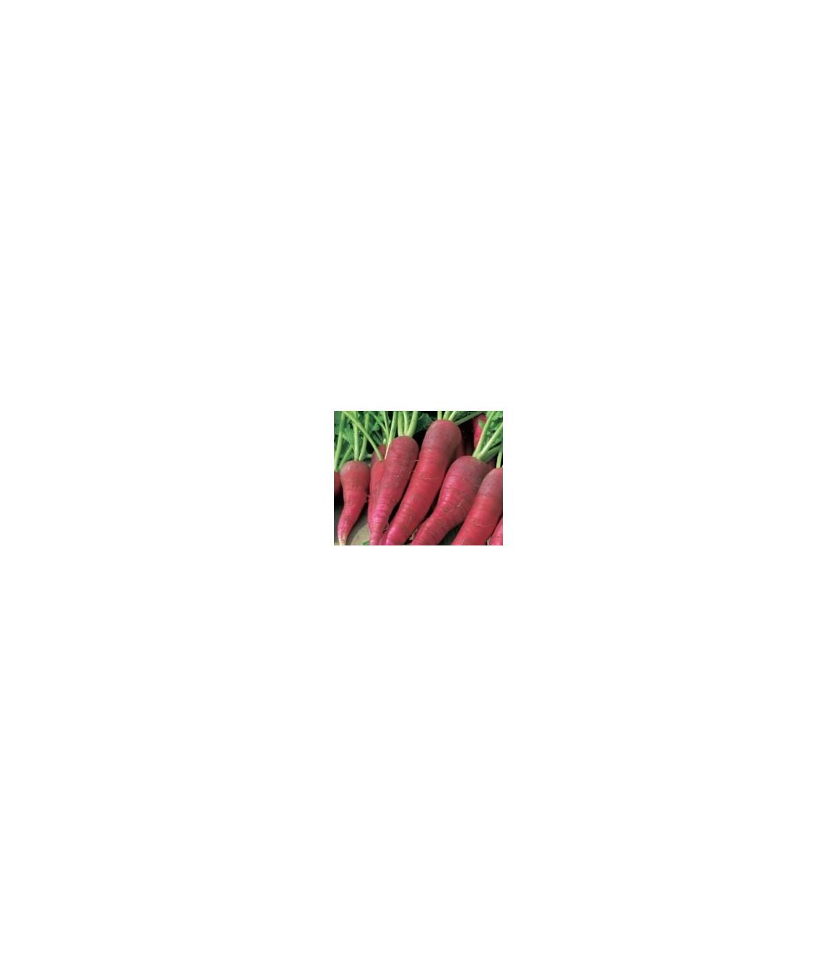 BIO Reďkovka ružová skorá - semená reďkovky - 0,3 g