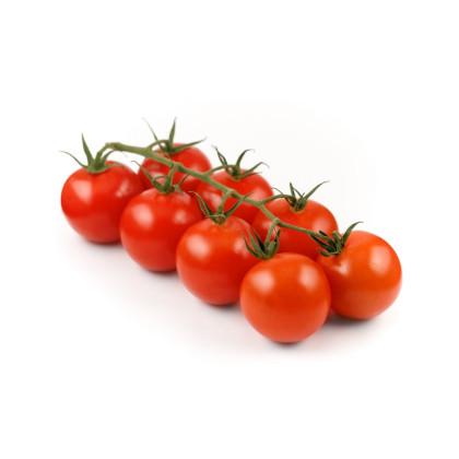 Koktejlové paradajky