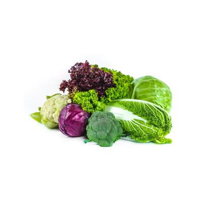 Hlúbová zelenina