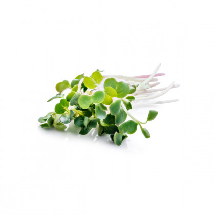 Microgreens/Mikro zelenina