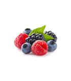 Sadenice ovocia a zeleniny
